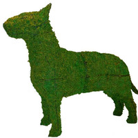 Dog Topiary Bull Terrier