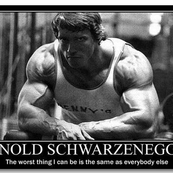 Arnold Schwarzenegger Motivational Quotes Art Silk Poster Bodybuilding Fitness Inspirational Pictures Wall Decor