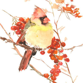 Female Cardinal Bird, Original watercolor bird painting, 12 X 9 in, cardinal bird lover art