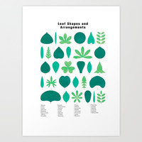 Leaf Shapes and Arrangements in Detail Art Print by Kathrinmay