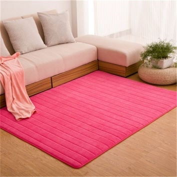 Ultra Soft Thick Memory Foam Absorbent Coral Fleece Fabric Area Rugs Nonslip Living Room Carpet Bathroom Rugs Set Floor Shag Rug