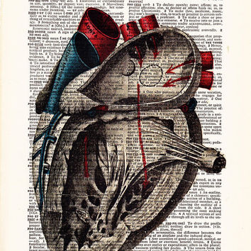 Anatomical Heart. illustration human anatomy . human heart  print on dictionary. antique book page. Anatomical Heart  FREE SHIPPING