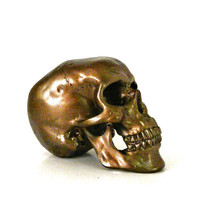 metallic bronze skull, industrial, skull head sculpture, mod, copper, anatomy, skull art