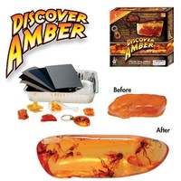 Discover with Dr. Cool Discover Amber Science Kit