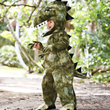 colossal t. rex child costume - Chasing Fireflies