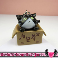 Black Anime CAT in a BOX Cellphone Dust Plug Charm or Cabochon