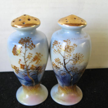 Oriental Nature design salt and pepper shakers with gold tops..made in Japan
