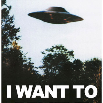 "X-Files ""I Want To Believe"" Paper Poster - Medium Sizes"