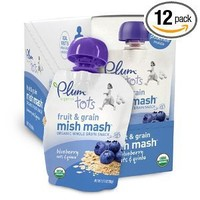 Plum Organics Mish Mash Blueberry Oats and Quinoa, 3.17-Ounce Pouches (Pack of 12)