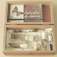 Entomology collection. Insect collection in glass vials and wooden box.