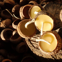 $12.80 acorn cap candles (24) by prettydreamer