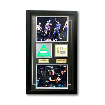 Bruce Springsteen Framed World Tour Backstage Passes Collage COA 16X26 Photos