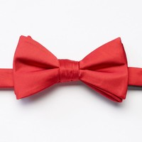Bow Tie Tuesday Patterned Pretied Bow Tie - Men, Size: One