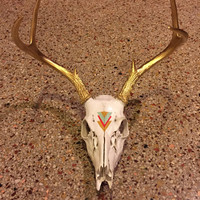 Hand Painted Tribal EuropeN Deer Mount