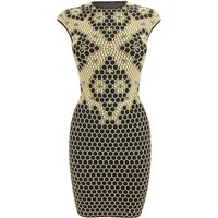 Alexander McQueen Black/pale yellow Honeycomb Bee 3D Puckering Lace Jacquard Mini-dress
