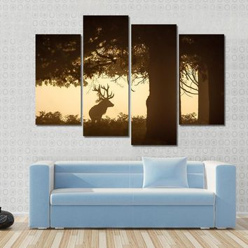 Deer Stag Silhouette Under Tree Canvas