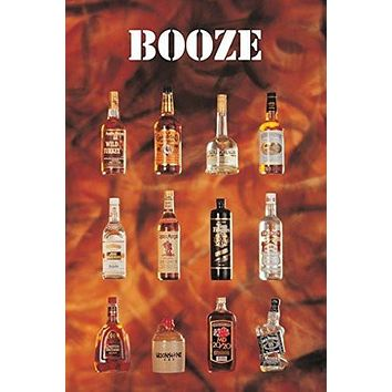 BOOZE POSTER Funny Alcohol Bottles Collage RARE HOT NEW 24x36