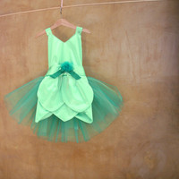 Green Fairy Girl Costume, Fairy Fancy Dress, cheerful, easy to wash, perfect for play and dress up parties