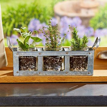 Galvanized Mason Jar Planter. With 3 Mason Jar Planters w/Lids