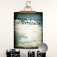 Large Birds on a Wire Photograph Modern by TriciaMcKellarPhoto