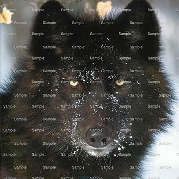 Black Wolf - Edible Cake and Cupcake Topper For Birthday's and Parties! - D5765
