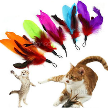 5pcs Replacement Refill Feather for Cat Kitten Toy Wand Teaser Pole Feather Toy
