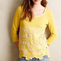 Daybloom Embroidered Pullover by Blue Tassel Dark Yellow