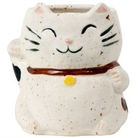 White Lucky Cat Mug