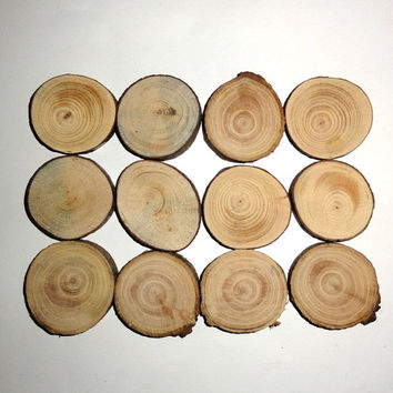 Set of 12 natural wood slices. Tree discs branches wooden blanks bark logs decor. Round Wood Slices for Craft Hobbies Pyrography. Wood discs