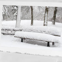 Canadian Winter Scene - Fine Art Photograph - Snowy day in the Park - Snow on the Bench - Magical Forest - Home winter decor, white trees