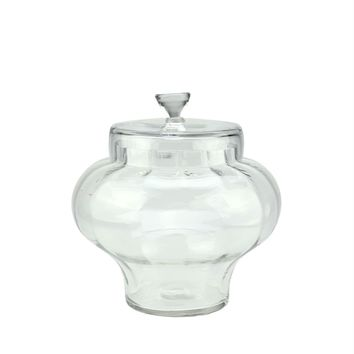 "11"" Transparent Segmented Glass Container with Lid"