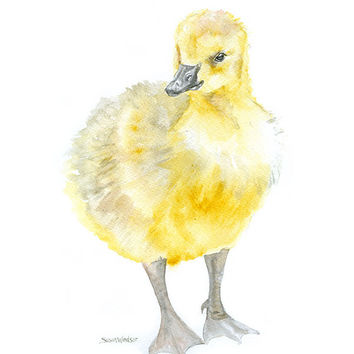 Gosling Watercolor