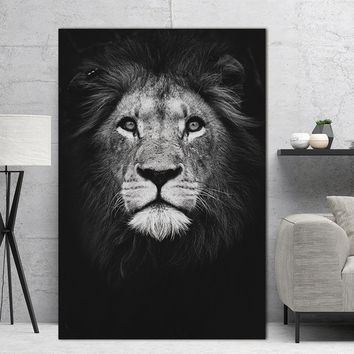 Canvas Wall Art: Black & White Animal Wall Art Prints