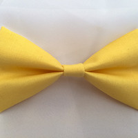 Summertime Yellow Hairbow