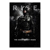 Batman Rise Posters from Zazzle.com