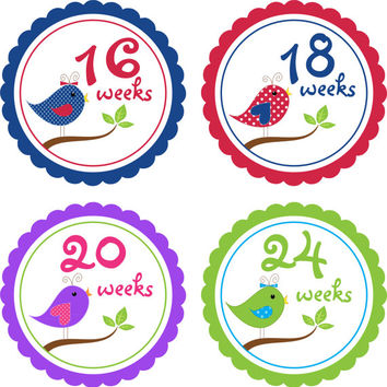 CUSTOM Pregnancy Stickers, Pregnancy Announcement, Weekly Stickers, Belly Stickers, Pregnancy Photo Prop, Baby Bump Stickers,