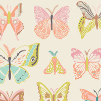 Bentley's Butterfly Fabric By The Yard | 100% Cotton