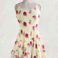 Radiant Roses Sundress
