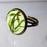Cat Tail Moss (Isothecium myosuroides) Adjustable Ring, bryophyte pendant, woodland, forest, plant jewelry, leaf jewellery
