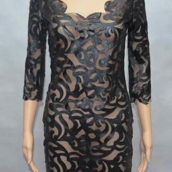 Black Plunging Neckline Sheer Bodycon Dress