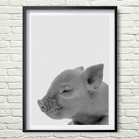 Pig Print, Baby Piglet Wall Art, Cute Farm Animal Photo Black and White Nursery Decor Printable Art Instant Download Grey Photography *129*
