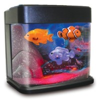Fascinations DeskQuarium