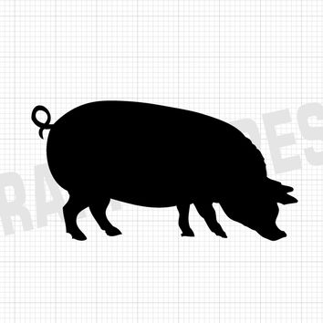 Potbelly Pig Decal - Animal Decals