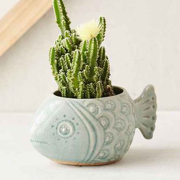 Plum & Bow Fish Planter- Turquoise One