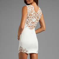 DRESS THE POPULATION Elizabeth Tank Dress with Crochet Detail