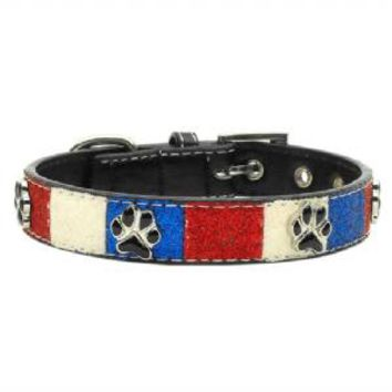 Patriotic Ice Cream Collar Paws Md