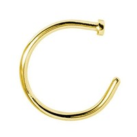 BodyJ4You Nose Rings Hoop 22 Gauge Goldtone Stainless Steel Piercing Jewelry