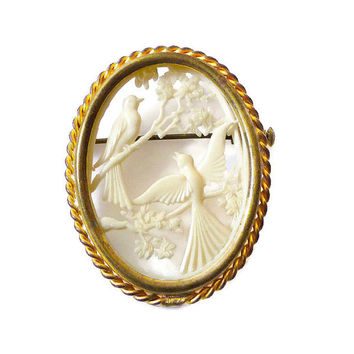Depose France Pin, Celluloid Brooch, Bird Motif, Gold Tone, Frame Bezel, French Jewelry, Vintage Jewellery