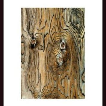 Plywood Texture Abstract, framed black wood, white matte