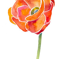 Red Poppy Print - Archival Quality Watercolor Giclee